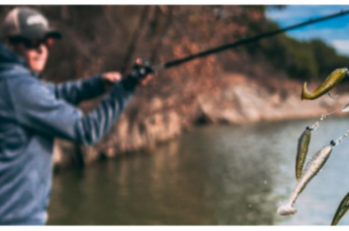 Five Umbrella Tips for Catching More bass