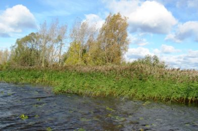 Closer to autumn, the conditions for any fishing change